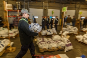An Iditarod volunteer moves a food drop bag to its proper location as others unload, weigh, organize and stack the mushers food bags destined for the checkpoints on the 2017 Iditarod at the Airland Transport warehouse facilities in Anchorage Alaska.Wednesday February 15, 2017.Photo by Jeff Schultz/SchultzPhoto.com  (C) 2017  ALL RIGHTS RESVERVED
