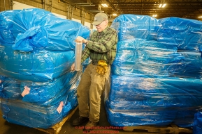 Volunteer Doug Calkin shrink-wraps a pallet of bagged straw as he helps other Iditarod volunteers unload, bag, stack and shrinkwrap the 1635 bales of straw that is destined for all the checkpoints on the 2017 Iditarod at the Airland Transport warehouse facilities in Anchorage Alaska. Thursday February 9, 2017.Photo by Jeff Schultz/SchultzPhoto.com  (C) 2017  ALL RIGHTS RESVERVED