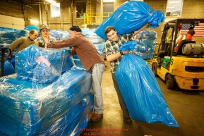 Iditarod volunteers move, stack and shrinkwrap some of  the 1635 bales of straw that is destined for all the checkpoints on the 2017 Iditarod at the Airland Transport warehouse facilities in Anchorage Alaska. Thursday February 9, 2017.Photo by Jeff Schultz/SchultzPhoto.com  (C) 2017  ALL RIGHTS RESVERVED
