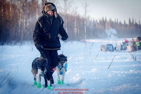 Volunteer vet Dr. James Kenyon walks two dropped dogs at the checkpoint in Manley Hot Springs during the 2017 Iditarod on Tuesday March 7, 2017.Photo by Jeff Schultz/SchultzPhoto.com  (C) 2017  ALL RIGHTS RESVERVED