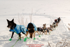 Ryan Redington and  team work their way up the steep bank from the Yukon River into the Galena checkpoint during the 2017 Iditarod on Thursday afternoon March 9, 2017.Photo by Jeff Schultz/SchultzPhoto.com  (C) 2017  ALL RIGHTS RESERVED