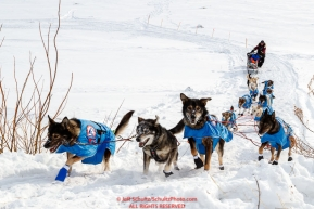 Noah Burmeister and team run up the hill from the Yukon River into at the Galena checkpoint during the 2017 Iditarod on Thursday afternoon March 9, 2017.Photo by Jeff Schultz/SchultzPhoto.com  (C) 2017  ALL RIGHTS RESERVED