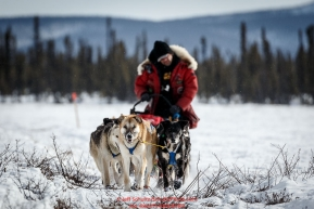 Hugh Neff runs down the trail nearing the Cripple Checkpoint on Thursday March 10 during Iditarod 2016.  Alaska.    Photo by Jeff Schultz (C) 2016  ALL RIGHTS RESERVED