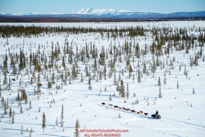 A team crosses through a spruce tree forest shortly after leaving the Galena checkpoint during the 2017 Iditarod on Friday afternoon March 10, 2017.Photo by Jeff Schultz/SchultzPhoto.com  (C) 2017  ALL RIGHTS RESERVED