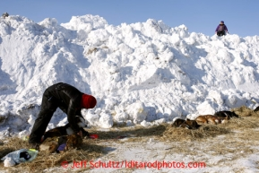 5-year old Harmony Jackson watches Michelle Phillips  from a snow berm used to block the wind as Michelle boots her dogs the Shaktoolik checkpoint on Monday March 11, 2013.Iditarod Sled Dog Race 2013Photo by Jeff Schultz copyright 2013 DO NOT REPRODUCE WITHOUT PERMISSION