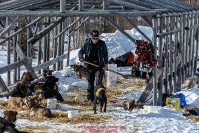 Jeff King scoops poop while his dogs rest during his 24-hour layover at Ruby during Iditarod 2016.  Alaska.    Photo by Jeff Schultz (C) 2016  ALL RIGHTS RESERVED