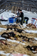 Volunteers Kipling Pedersen (left) and Jessica Toubman rake straw at the Ruby Checkpoint during the 2016 Iditarod.  March 11, 2016    Photo by Jeff Schultz (C) 2016  ALL RIGHTS RESERVED