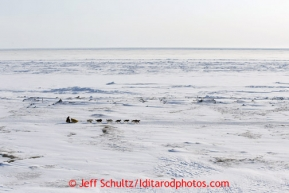 Mitch Seavey and his team along the Bering Sea on Tuesday March 12, 2013.Iditarod Sled Dog Race 2013Photo by Jeff Schultz copyright 2013 DO NOT REPRODUCE WITHOUT PERMISSION