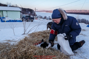 Volunteer Vet Greg Kloster feeds and cares for the dropped dogs wating to be flown out at the Ruby Checkpoint on Saturday March 12th during the 2016 Iditarod.  Alaska    Photo by Jeff Schultz (C) 2016  ALL RIGHTS RESERVED