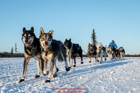 Ray Redington Jr. runs down the trail after leaving the Kaltag checkpoint on Saturday March 12th during the 2016 Iditarod.  Alaska    Photo by Jeff Schultz (C) 2016  ALL RIGHTS RESERVED