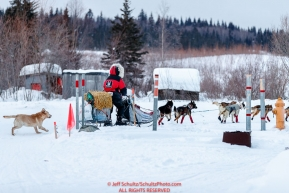 Aliy Zirkle is chased by a loose dog as she runs through the Kaltag checkpoint during the 2017 Iditarod on Sunday morning March 12, 2017.Photo by Jeff Schultz/SchultzPhoto.com  (C) 2017  ALL RIGHTS RESERVED