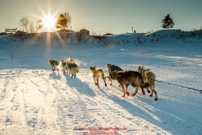 Linwood Fiedler team runs down the Yukon River toward the riverbank up into the checkpoint at Kaltag during the 2017 Iditarod on Sunday evening  March 12, 2017.Photo by Jeff Schultz/SchultzPhoto.com  (C) 2017  ALL RIGHTS RESERVED