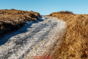 The Iditarod Trail is solid ice sunk between tundra tussocks a few miles before the Unalakleet checkpoint on Sunday March 13th during the 2016 Iditarod.  Alaska    Photo by Jeff Schultz (C) 2016  ALL RIGHTS RESERVED