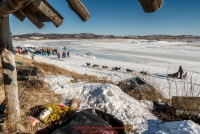Richie Diehl runs on the slough to the dog lot area at the Unalakleet checkpoint on Sunday March 13th during the 2016 Iditarod.  Alaska    Photo by Jeff Schultz (C) 2016  ALL RIGHTS RESERVED