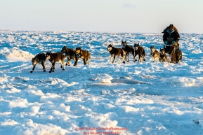 Ray Redington Jr. runs on the sea ice of Norton Sound a few miles before the Koyuk checkpoint during the 2017 Iditarod on Monday evening  March 12, 2017.Photo by Jeff Schultz/SchultzPhoto.com  (C) 2017  ALL RIGHTS RESERVED