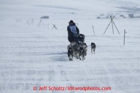 Richie Diehl runs on the trail a few miles from Nome in 30 mph winds on Thursday March 14, 2013 during the Iditarod Sled Dog Race 2013Photo by Jeff Schultz copyright 2013 DO NOT REPRODUCE WITHOUT PERMISSION