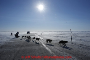 Richie Diehl crosses the Nome Road a few miles from Nome in 30 mph winds on Thursday March 14, 2013 during the Iditarod Sled Dog Race 2013Photo by Jeff Schultz copyright 2013 DO NOT REPRODUCE WITHOUT PERMISSION