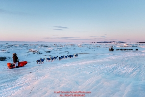 Jeff King leads Ralph Johannessen on the sea ice at dawn leaving the Koyuk checkpoint on Monday March 14th during the 2016 Iditarod.  Alaska    Photo by Jeff Schultz (C) 2016  ALL RIGHTS RESERVED