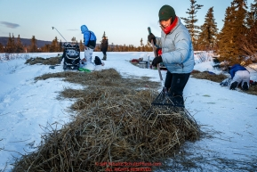 Volunteer Sally Hamm rakes straw after a musher left  the Koyuk checkpoint in the morning on Monday March 14th during the 2016 Iditarod.  Alaska    Photo by Jeff Schultz (C) 2016  ALL RIGHTS RESERVED