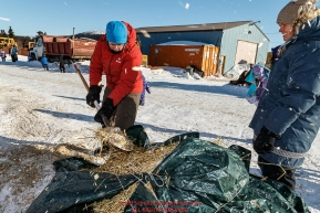 Volunteers Lucy Dorman picks up straw and dog food after a team leaves and Brita Heikkenen watches at the Elim checkpoint on Monday March 14th during the 2016 Iditarod.  Alaska    Photo by Jeff Schultz (C) 2016  ALL RIGHTS RESERVED