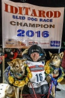 Dallas Seavey poses with his lead dogs Reef and Tide on the winner's podium after winning the 44th running of the Iditarod Sled Dog Race in Nome on Tuesday March 15th  in record time of 8 Days 11 hours 20 minutes 16 seconds  Iditarod 2016  Photo by Jeff Schultz (C) 2016  ALL RIGHTS RESERVED