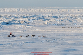 Aliy Zirkle runs on the trail with the Bearing Sea ice in the background and a