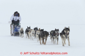 Christine Roalofs runs on the trail a few miles from Nome as she is about to finish in last place and be the winner of the Red Lantern Award.  Iditarod Sled Dog Race 2013Photo by Jeff Schultz copyright 2013 DO NOT REPRODUCE WITHOUT PERMISSION