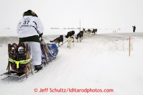 Christine Roalofs crosses the Nome raod a few miles from the finish line as she is about to finish in last place and be the winner of the Red Lantern Award.  Iditarod Sled Dog Race 2013Photo by Jeff Schultz copyright 2013 DO NOT REPRODUCE WITHOUT PERMISSION