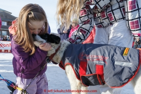 Ashley Perry, a close friend of Wade Marrs, hugs one of his dogs after his finish at the Nome finish line on Wednesday March 18, 2015 during Iditarod 2015.  (C) Jeff Schultz/SchultzPhoto.com - ALL RIGHTS RESERVED DUPLICATION  PROHIBITED  WITHOUT  PERMISSION