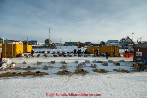 Dogs rest comfortably in the dog lot in Nome on Thursday March 19, 2015 during Iditarod 2015.  (C) Jeff Schultz/SchultzPhoto.com - ALL RIGHTS RESERVED DUPLICATION  PROHIBITED  WITHOUT  PERMISSION