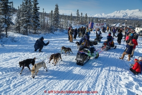 Jordan Seager weaves through snowmachines as he starts the 2015 Junior Iditarod on the Denali Highway on on Sunday March 1, 2015.(C) Jeff Schultz/SchultzPhoto.com - ALL RIGHTS RESERVED DUPLICATION  PROHIBITED  WITHOUT  PERMISSION