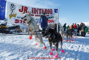 Andrew Nolan's dogs leap at the start of the 2015 Junior Iditarod on the Denali Highway on on Sunday March 1, 2015.(C) Jeff Schultz/SchultzPhoto.com - ALL RIGHTS RESERVED DUPLICATION  PROHIBITED  WITHOUT  PERMISSION