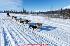 Rose Capistrant and team run down the trail on the Denali Highway with the Alaska Range in the background during the start day of the 2015 Junior Iditarod on Sunday March 1, 2015(C) Jeff Schultz/SchultzPhoto.com - ALL RIGHTS RESERVED DUPLICATION  PROHIBITED  WITHOUT  PERMISSION