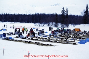 Monday March 5, 2012  Overview of dog teams and mushers at the Finger Lake checkpoint during Iditarod 2012.
