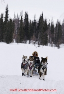 Monday March 5, 2012  Ken Anderson arrives at the Finger Lake checkpoint during Iditarod 2012.