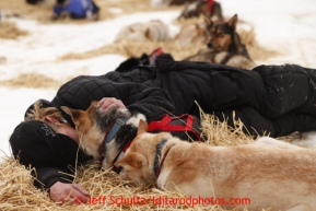 Justin Savidas lies down with his lead dogs at the halfway checkpoint of Iditarod on Friday March 8, 2013.Iditarod Sled Dog Race 2013Photo by Jeff Schultz copyright 2013 DO NOT REPRODUCE WITHOUT PERMISSION