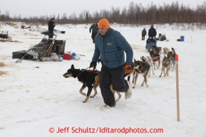 Ricky Ciletti a volunteer and employee of sponsor Donlin Gold helps Aaron Pecks team out at the halfway checkpoint of Iditarod on Friday March 8, 2013.Iditarod Sled Dog Race 2013Photo by Jeff Schultz copyright 2013 DO NOT REPRODUCE WITHOUT PERMISSION