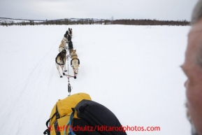 The view from Matt Giblin 's sled on the trail into the halfway checkpoint of Iditarod on Friday March 8, 2013.Iditarod Sled Dog Race 2013Photo by Jeff Schultz copyright 2013 DO NOT REPRODUCE WITHOUT PERMISSION