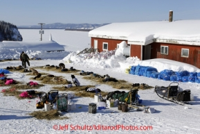 Friday March 9, 2012 Dog teams at rest at the Yukon River village of Ruby, Alaska. Iditarod 2012. These teams are taking an 8-hour layover here. There is a mandatory rule that teams must take an 8-hour rest somewhere along the Yukon River.