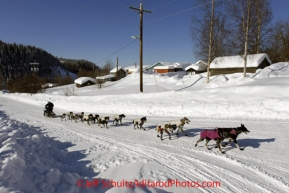 Friday March 9, 2012 Ken Anderson arrives at the Yukon River village of Ruby, Alaska. Iditarod 2012.
