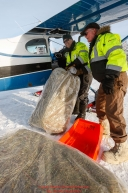 Pilot Joe Pendergrass helps load hay bound for Rainy Pass into Udo Cassee's plane as the Iditarod Air Force flies out food and supplies to checkpoints on Saturday February 17th  before the 2018 race from the Willow airport in Willow, Alaska Photo by Judy Patrick/SchultzPhoto.com  (C) 2018  ALL RIGHTS RESERVED