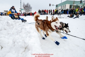 Tom Schonberger makes the turn at Cordova Street and 4th Avenue during the ceremonial start of the 2018 Iditarod in Anchorage, Alaska on Saturday, March 3, 2018.Photo by Jeff Schultz/SchultzPhoto.com  (C) 2018  ALL RIGHTS RESERVED
