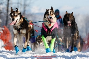 Shaynee Traska lead dogs run on the trail after leaving Willow during the Official Start of the 2018 Iditarod Sled Dog Race in Willow, Alaska on March 04, 2018. Photo by Jeff Schultz/SchultzPhoto.com  (C) 2018  ALL RIGHTS RESERVED