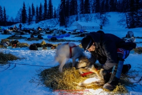 Volunteer veterinarian Chad Hunt examines an Aaaron Burmeister dog in the early morning hours on Monday, March 05, 2018 during the 2018 Iditarod Race. Photo by Jeff Schultz/SchultzPhoto.com  (C) 2018  ALL RIGHTS RESERVED