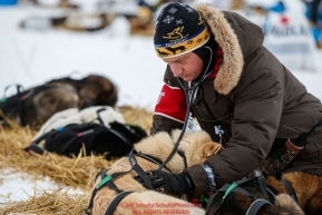 Volunteer veterinarian Steven Shipley examines a Rick Casillo dog at the Nikolai checkpoint  during the 2018 Iditarod race on Tuesday afternoon March 06, 2018. Photo by Jeff Schultz/SchultzPhoto.com  (C) 2018  ALL RIGHTS RESERVED