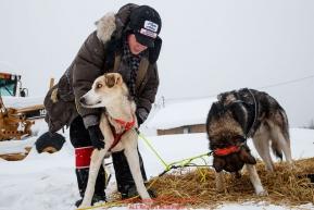 Volunteer veterinarian Kimberly McCreedy examines