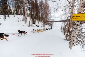Kristie Berington runs up the river bank in the afternoon and into the Takotna checkpoint during the 2018 Iditarod race on Wednesday March 07, 2018. Photo by Jeff Schultz/SchultzPhoto.com  (C) 2018  ALL RIGHTS RESERVED