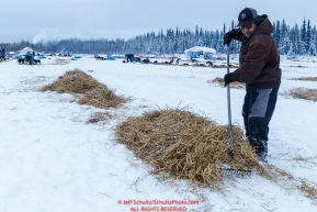 Local volunteer Bernie Gregory rakes straw from a team who recenlty left in the morning at the Nikolai checkpoint during the 2018 Iditarod race on Wednesday March 07, 2018. Photo by Jeff Schultz/SchultzPhoto.com  (C) 2018  ALL RIGHTS RESERVED