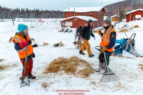 Norwegian volunteers rake used straw as Tim Muto and team rest at the Takotna checkpoint on Thursday, March 8th during the 2018 Iditarod Sled Dog Race -- AlaskaPhoto by Jeff Schultz/SchultzPhoto.com  (C) 2018  ALL RIGHTS RESERVED