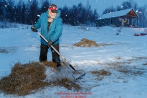 Volunteer Chris Kelley rakes used straw in the morning during a snowfall at the Iditarod checkpoint on Friday, March 9th during the 2018 Iditarod Sled Dog Race -- AlaskaPhoto by Jeff Schultz/SchultzPhoto.com  (C) 2018  ALL RIGHTS RESERVED